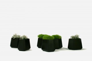 the planter is the tool to create personalized combinations through juxtapositions.
